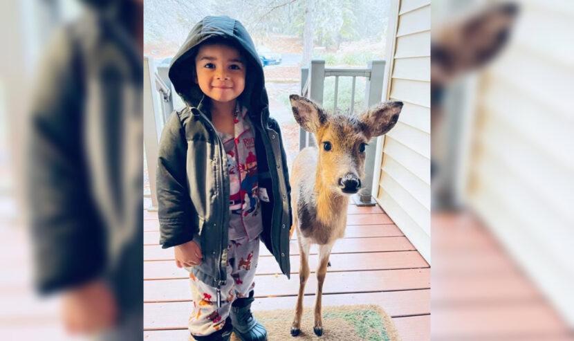 Niño de 4 años trae a casa a un extraño compañero