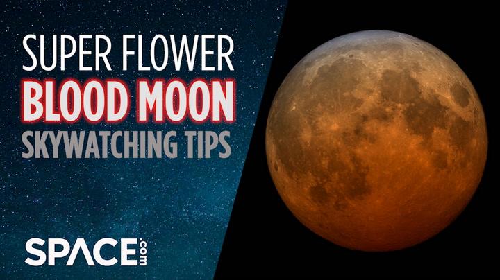 Enseles a sus hijos sobre el eclipse lunar de Super Flower Blood Moon de 2021