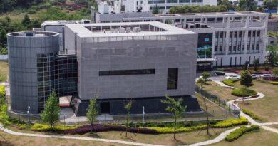 """Un científico estadounidense recuperó 13 de las 200 secuencias del coronavirus hallado en Wuhan que habían sido eliminadas """"sospechosamente"""""""