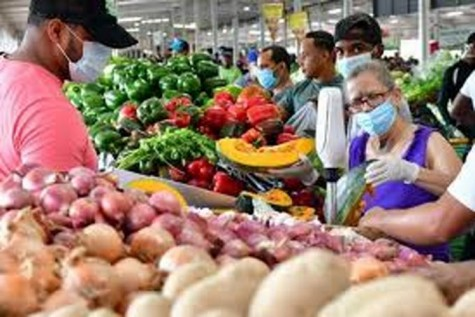 Las exportaciones agrícolas de República Dominicana hacia Estados Unidos aumentan 37%